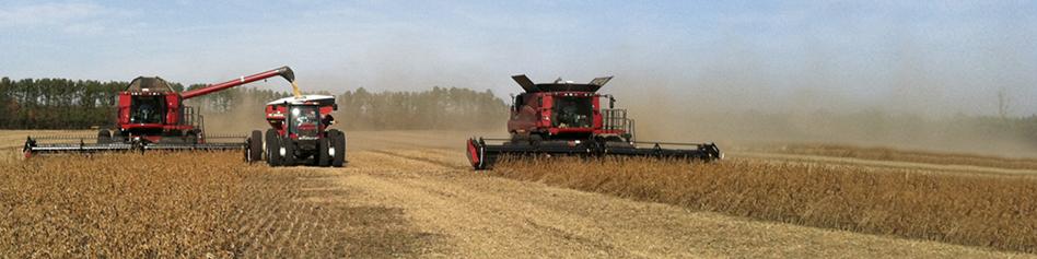 Header_Harvest