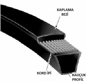 kayis1